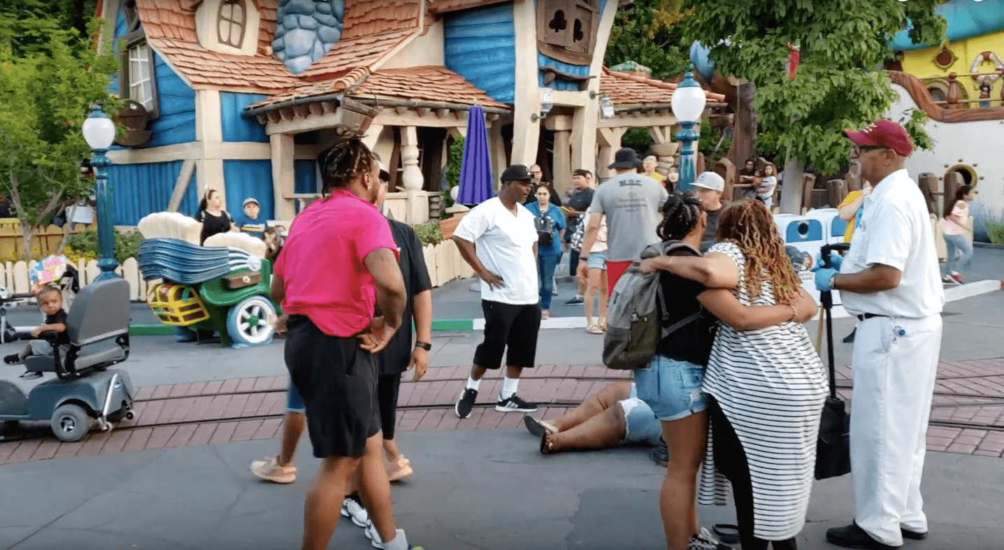 Rough-and-Tumble! Tears and Screams! In Florida Disneyland Family Started a Whacking Scuffold (video)