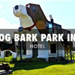 Dog Bark Park Inn B&B: Oh my god! This is a giant beagle-shaped house!