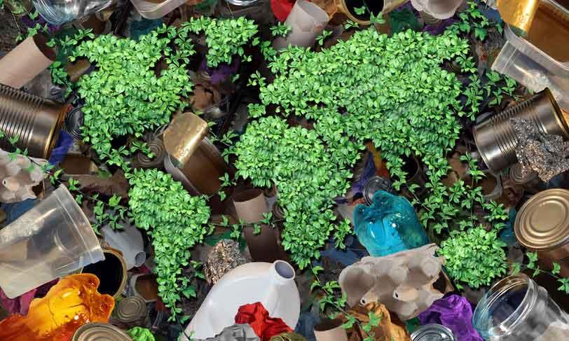 Hvor kan man købe miljøvenlige produkter?
