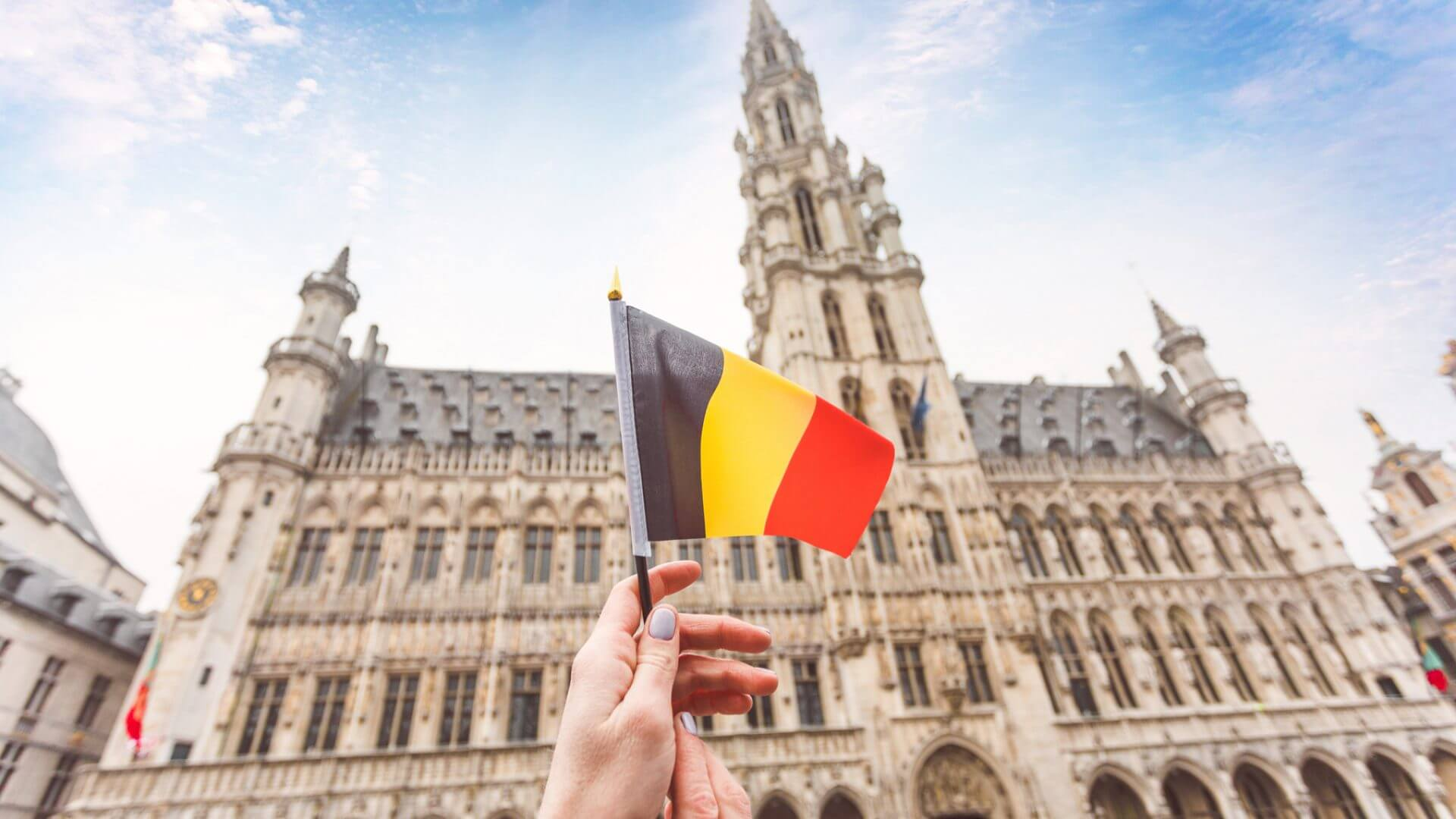 No Government: a Year of Belgium Politics without Politicians. How Do Belgians Live?